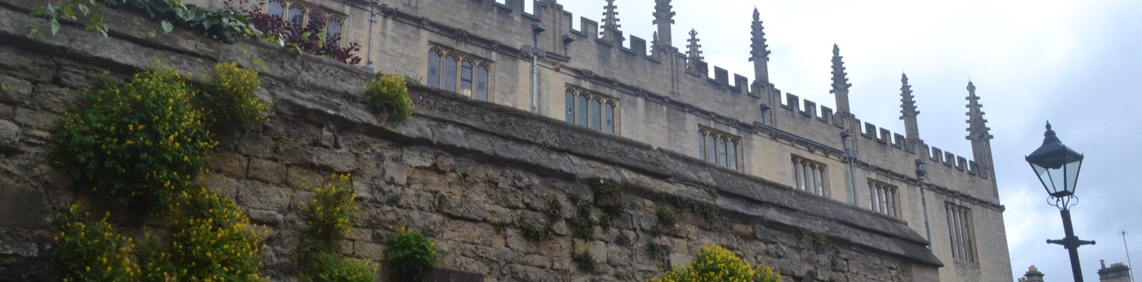 A view of the Bodleian