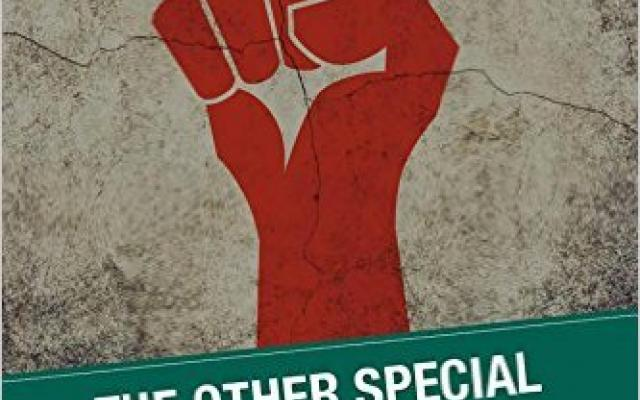 The Other Special Relationship book cover
