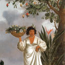 Mameluca woman under a fruiting cashew tree (1641-44)