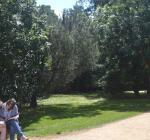 Studying in University Park